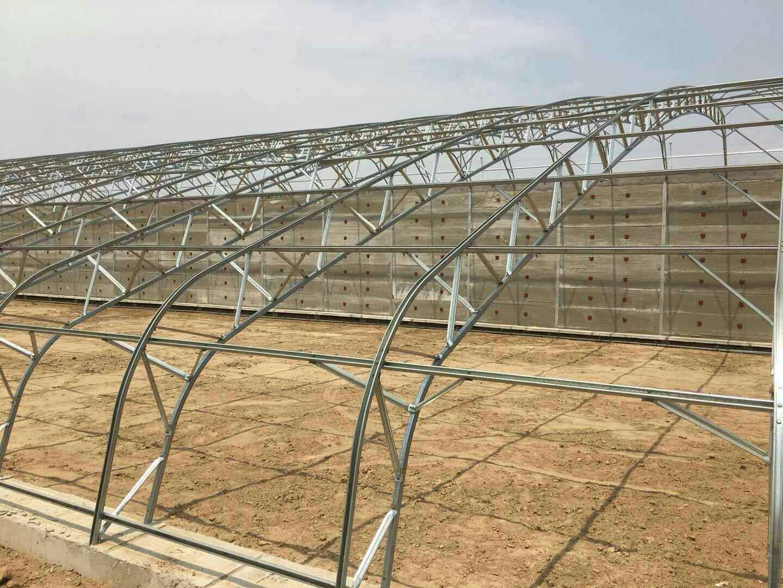 温室大棚如何维修以及如何进行养护?
