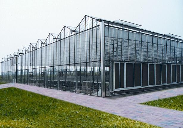 大棚建设技术之玻璃温室